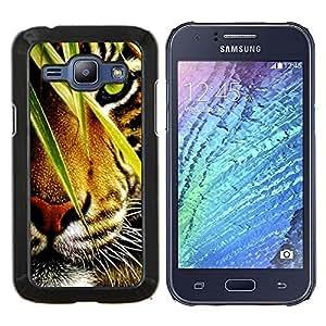 Caucho caso de Shell duro de la cubierta de accesorios de protección BY RAYDREAMMM - Samsung Galaxy J1 J100 - Tiger Jungle Selva Selva felino de ojos