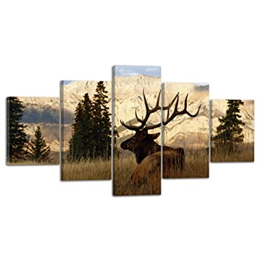 VIIVEI Nature Calligraphy Animal Scenery Deer Elk Wall Art Canvas Prints Art Home Decor for Living Room Poster Abstract Pictures Pictures 5 Panel Large HD Printed Painting Framed Ready to Hang