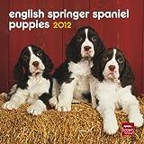 English Springer Spaniel Puppies 2012 7X7 Mini Calendar