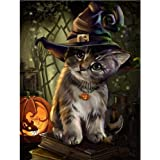 Diamond Art, 5d Full Drill Diamond Painting Kits for Adults, DIY Paint with Diamonds (Halloween cat, 11.81 x 15.74 in)