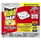 Raid Max double control ant baits, 0.28 oz - Best Reviews Guide