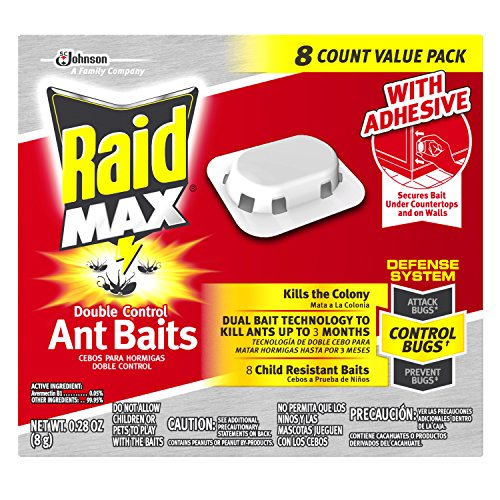 Thing need consider when find combat ant traps indoor?