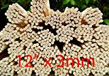100 Rattan Reed Diffuser Replacement Sticks 12″ x 3mm