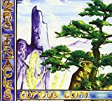 Curious Corn by Ozric Tentacles (2004-02-10)