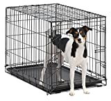 MidWest iCrate Dog Crate 30in x 19in x 21in