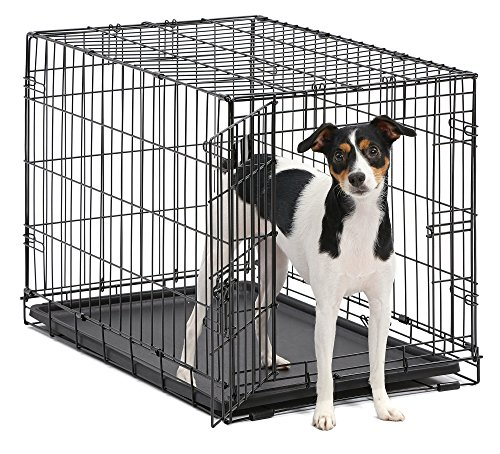 Dog Crate   MidWest iCrate 30 Folding Metal Dog Crate w/Divider Panel, Floor Protecting Feet & Leak-Proof Plastic Tray   30L x 19W x 21H Inches, Medium Dog, Black