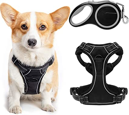 Expawlorer No Pull Dog Harness with 16ft Retractable Dog Leash Set   Amazon