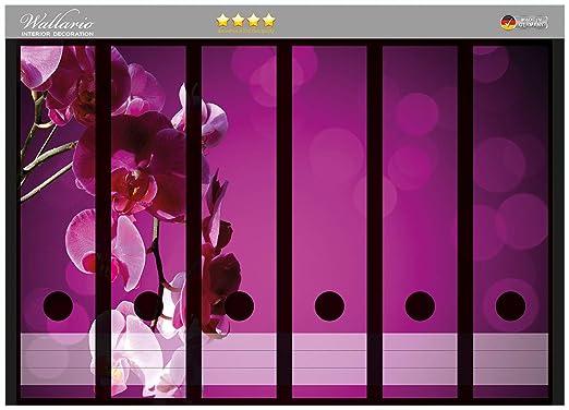 Archivadores pegatinas de color rosa orquídea, flor rosa en ...