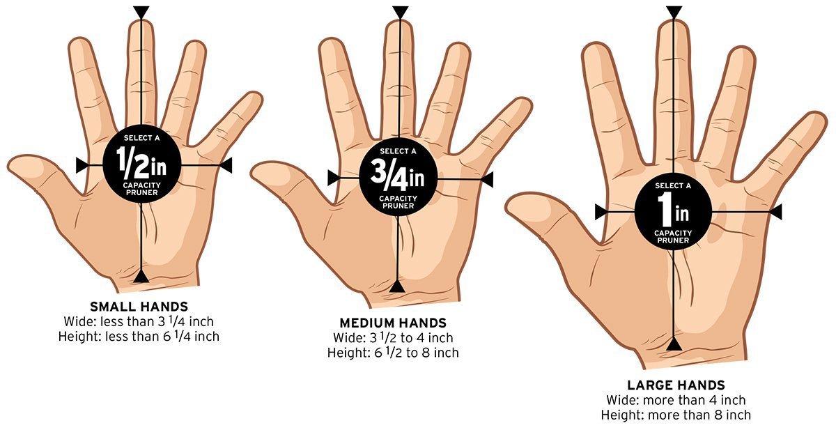 Corona RP 3230 Ratchet Hand Pruner, 3/4-Inch Cut by Corona (Image #5)