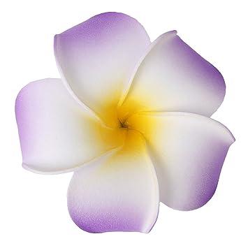 hochzeitsgesellschaft hawaiian frangipani plumeria blume schaum