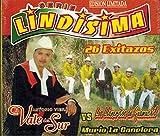 El Vale Del Sur - Los Llaneritos De Guamuchil (2CDs 26 Exitazos) TNCD-2396)