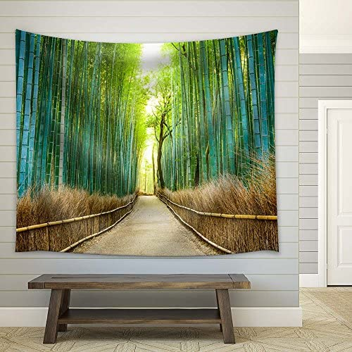 A Quiet Path in The Bamboo Forest