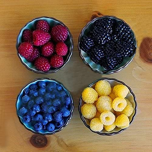 Amazon.com : Kasuki 4000 Pcs/Pack Mixed Color Raspberry Seeds Each 1000 Pcs for Blue Black Red Yellow Fruit Seed : Garden & Outdoor