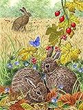 Caroline's Treasures ASA2140GF Leverets and Rabbit Garden Size Flag, Small, Multicolor