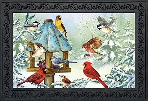 Briarwood Lane Cold Feet, Warm Hearts Winter Doormat Cardinals Finch Indoor Outdoor 18 x 30