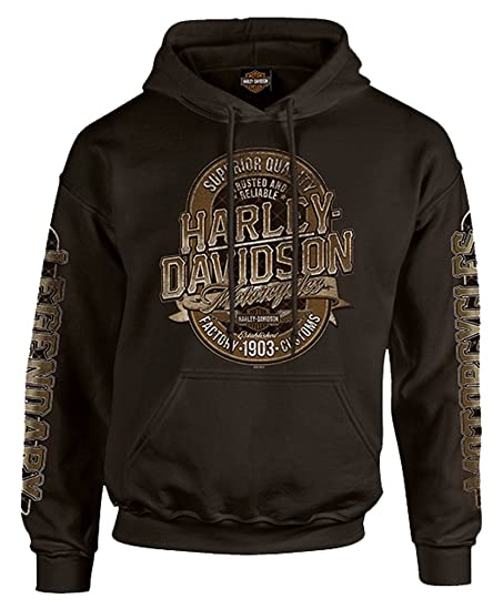 Amazon.com: Harley-Davidson Mens Distressed Dark Force Pullover ...