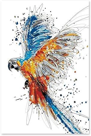 Peinture Par Numero Colore Animal Perroquet Diy Peinture Numerique Art Peinture Avec Ame Numerique Peinture A L Aquarelle Feeling Acrylique Peinture Decoration De La Maison 40x50cm Qz1914 Amazon Fr Cuisine Maison