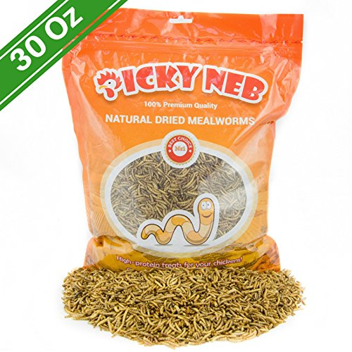 100-Non-GMO-Dried-Mealworms-High-Protein-Mealworm-Treats-Perfect-for-Your-Chickens-Ducks-Wild-birds-Turtles-Hamsters-Fish-and-Hedgehogs