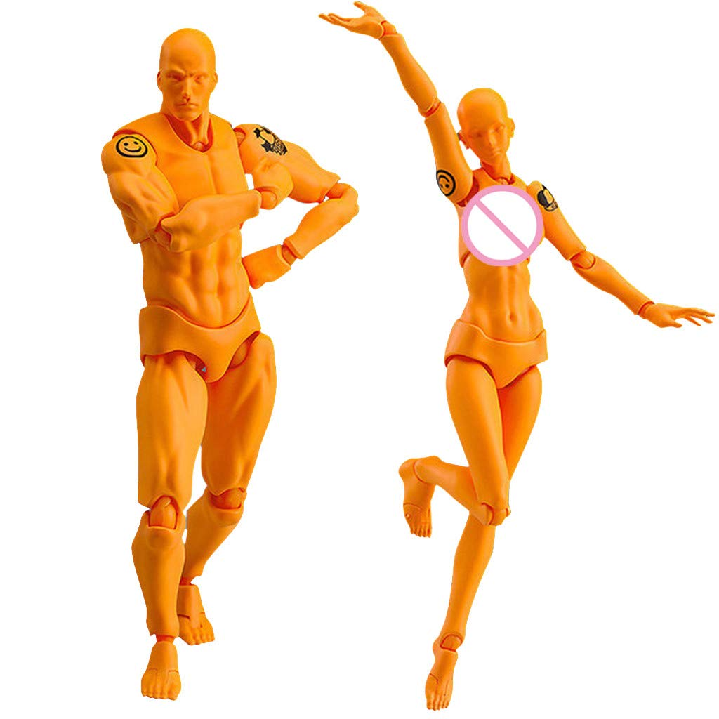 Weite 2 Pcs/Set Drawing Action Figure Models, Realistic Human Mannequin Male Female Set, Different Gestures, Special Display Base, Suitable for Sketching, Painting, Artist (C) weitelis