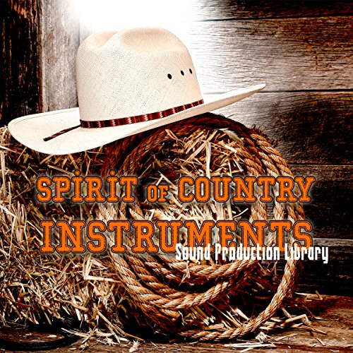 COUNTRY INSTRUMENTS - PERFECT ORIGINAL WAVE SAMPLES LIBRARY on DVD ()