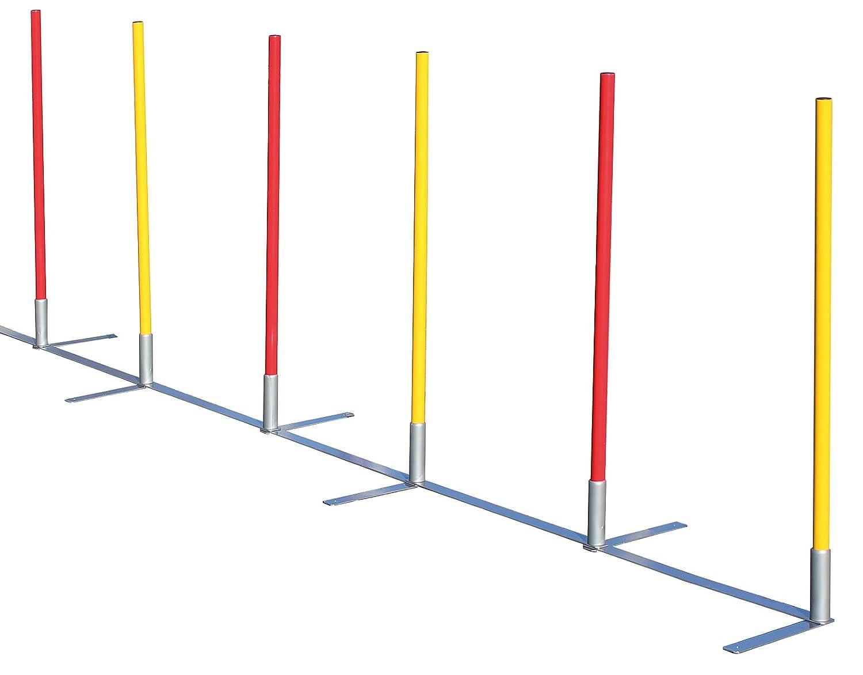Slalom mit 12 Stangen für Agilitytraining