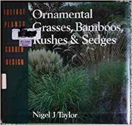 Ornamental Grasses Bamboos Rushes Sedges Foliage Plants In