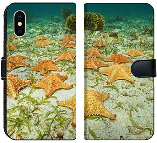 Cluster Starfish - Luxlady iPhone XS Flip Fabric Wallet Case Image ID: 35468476 Cluster of Starfish Oreaster reticulatus Underwater on The Ocean Floor