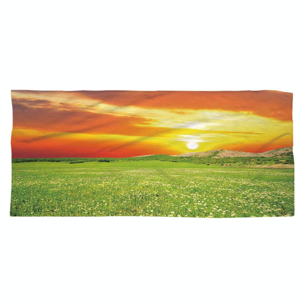 iPrint Large Cotton Microfiber Beach Towel,Nature,Daisy Flower Meadow Rural with Dramatic Horizon Sky Country Image,Fern Green Yellow Orange,for Kids, Teens, and Adults