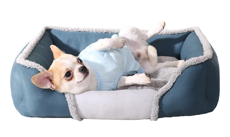 bianco divano per cani Cuscino Rex Cuccia Letto Piazza in Eco Pelle M 65/X 80/colore
