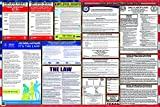 Updated Texas/Federal Combination Labor Law Posters (New)
