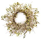 Melrose International Birch Branch Wreath with Mini Leaves, 26""