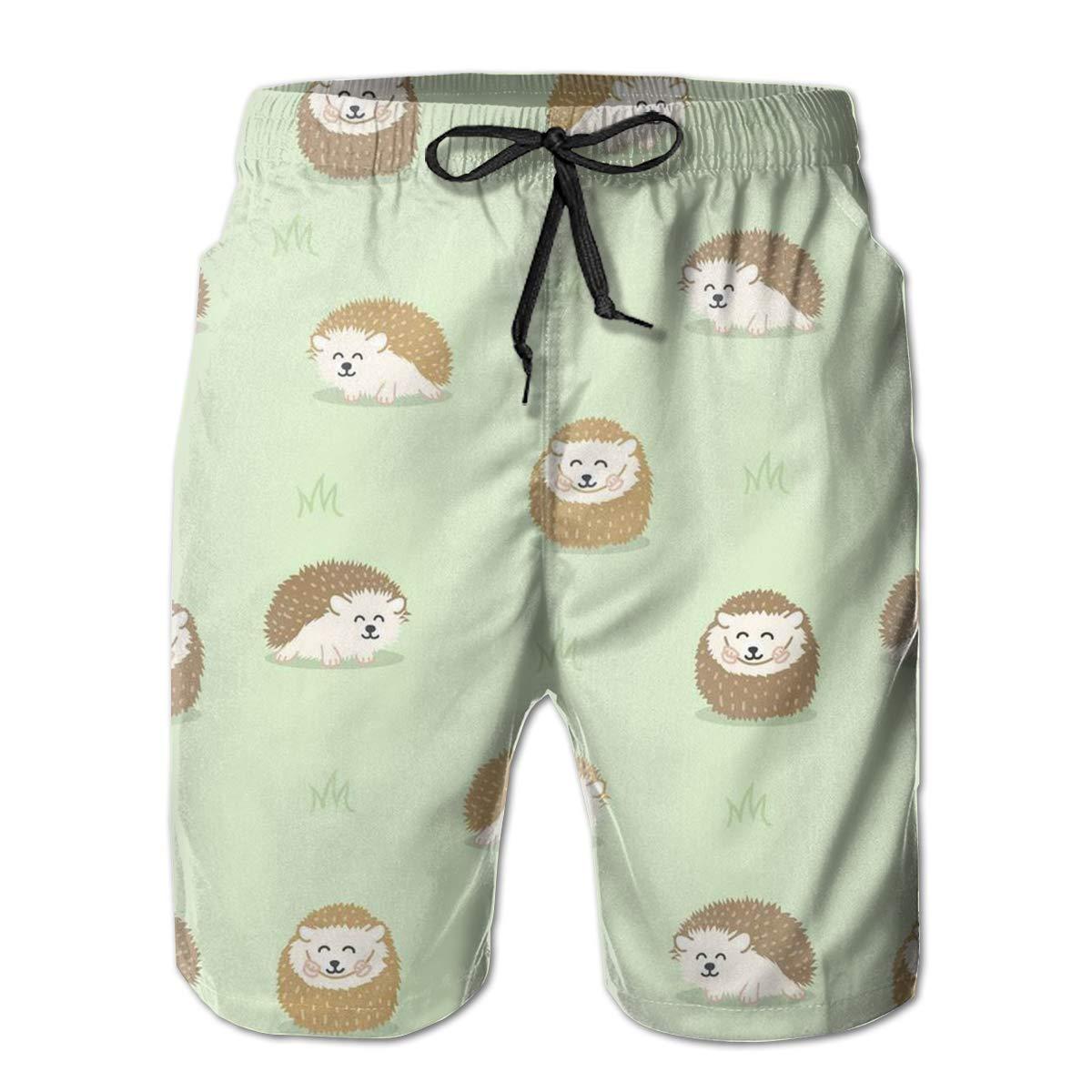 LDFUMG Cartoon Hedgehog Mens Beach Board Shorts Quick Dry Summer Casual Swimming Soft Fabric with Pocket