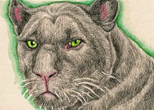 ACEO Original Trading card-Black Panther Big Cat-Wildlife Art-Carla Smale
