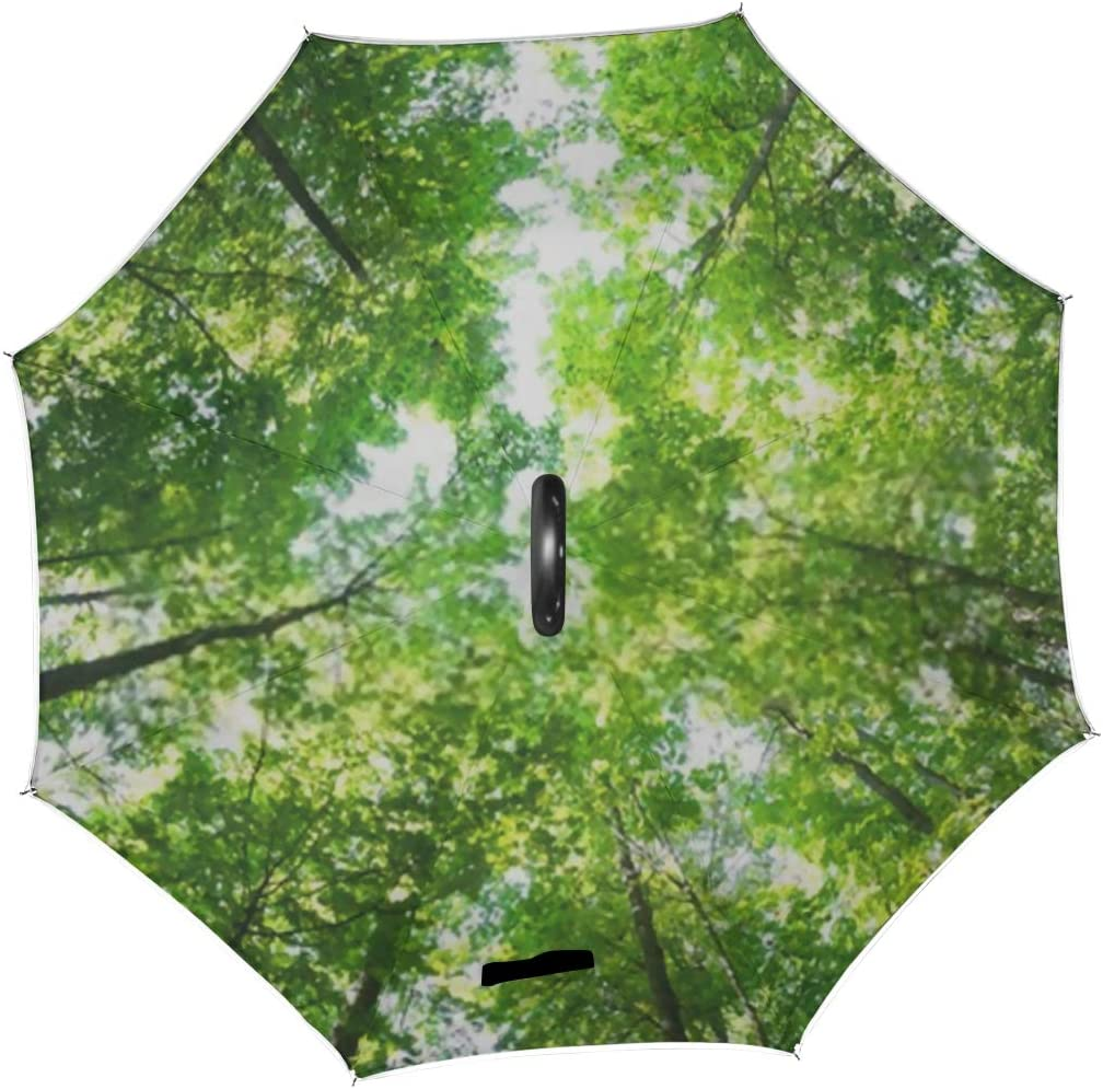 Double Layer Inverted Inverted Umbrella Is Light And Sturdy Green Forest Tree Leaves Sun Light Reverse Umbrella And Windproof Umbrella Edge Night Ref