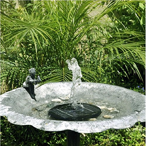 HomeSprout Solar Fountain Pump For Bird Baths, Ponds And Free Standing  Fountains.