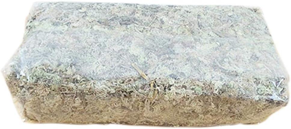 Sustratos de hierba de agua de musgo seco de musgo de agua de 6L para suelos, mantillos y medios de plantación de orquídeas Phalaenopsis, suministros para plantas de jardinería
