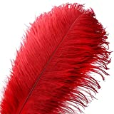 10pcs Natural Ostrich Feather Craft 14-16inch(35-40cm) Plume for Wedding Centerpieces Home Decoration (Red)