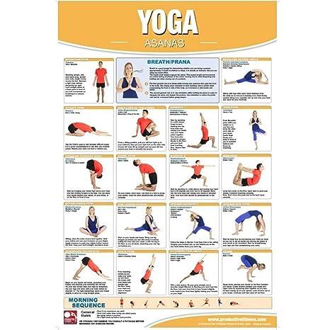 Amazon.com : Productive Fitness Posters Yoga Asana Exercises ...