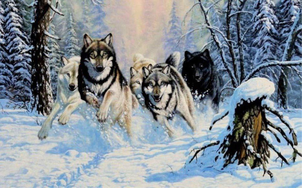 WAZHCY Malen nach Zahlen für Erwachsene Wald Wald Wald Schnee Wölfe Geschenk für Freund Kind DIY 40X50CM Ohne Rahmen B07PMSRMYC | Stil  67ee29