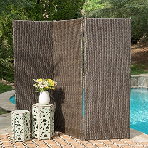 Style Resin Fencing - GDF Studio 300377 Osage Outdoor Wicker Privacy Screen (Light Ash Brown),