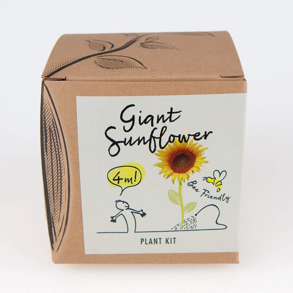 Giant Sunflower Gift Growing Set