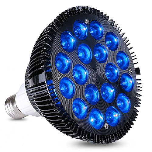 450 Nm Led Light