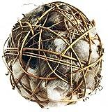 "Bird Nesting Globe Filled with Alpaca Fleece - All Natural, Hand Made in Montana (6"")"