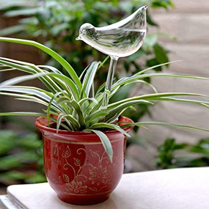 Plant Plastic Self Watering Globes Transparent Mini Durable Clear Aqua Bulbs UK