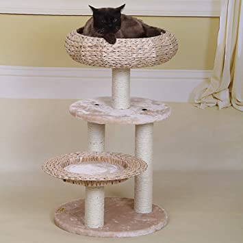 QNMM Cat Tree Activity Center Scratching Rest Cama Cat Tree Tower Cat Play Tower Activity Center Jugar Relax Y Dormir: Amazon.es: Productos para mascotas