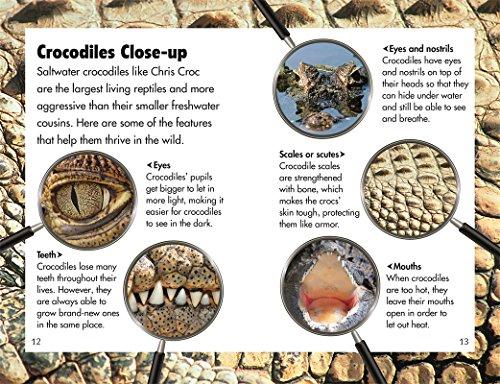 DK Readers L3: Snappy Crocodile Tale by DK Children (Image #2)