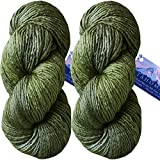 Living Dreams TAHOMA Luxuriously Soft Merino Silk Yarn. Cruelty Free & Responsibly Sourced. Hand Dyed in USA. Aran Weight, Twin Pack, Olive