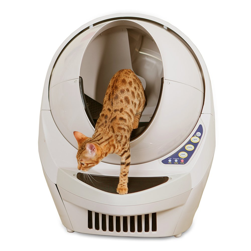 Best Cat Litter Boxes 2019 Reviews Amp A Detailed Buying Guide