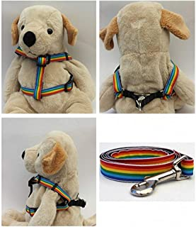 "product image for Diva-Dog 'Rainbow' Custom 5/8"" Wide Dog Step-in Harness with Plain or Engraved Buckle, Matching Leash Available - Teacup, XS/S"