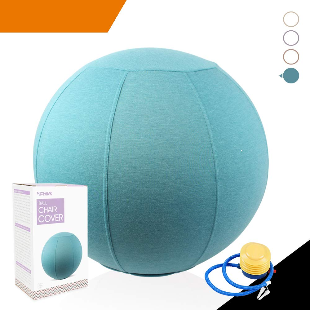 Sport Shiny Classic Balance Ball Chair,Stability Yoga Ball with Machine Washable Slipcover,Ergonomic Active Sitting Exercise Ball Chair,65cm Size,Aqua,Quick Air Pump Included by S SPORT SHINY ALWAYS ON THE RUN 2006